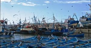المهنيون الإسبان يعربون عن ارتياحهم لاتفاق تسليم رخص الصيد البحري