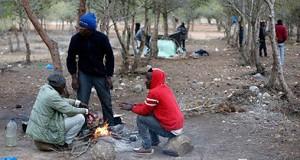 السلطات المغربية تفرغ غابات تطوان من المهاجرين الأفارقة