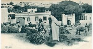 بائعة الحطب في السوق دبرّا.. وما جاورها