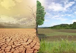 جهة طنجة تطوان الحسيمة الأكثر عرضة لأضرار التغيرات المناخية