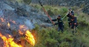 اندلاع حريق كبير بغابة 'أسمير' بالفنيدق يأتي على آلاف الأشجار