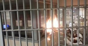 """تفاصيل """"ثورة الزنازين"""" في سجن عكاشة"""