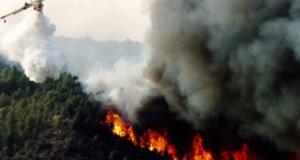 """بعد خمسة أيام من اندلاعه، أخيرا يتم السيطرة على حريق """"جبل الحبيب"""""""