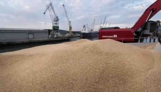 نتيجة الجفاف في السنة الماضية، المغرب يستورد 848 ألف طن من القمح من الولايات المتحدة وأوروبا بأسعار تفضيلية