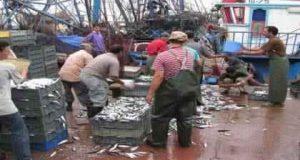 """حادث """"فكري"""" يدفع سماسرة سوق السمك بالحسيمة إلى الاختفاء لتنزل أسعاره إلى أثمنة قياسية"""