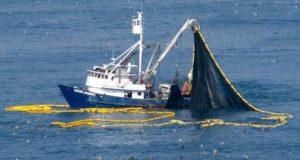 """غرفة الصيد البحري المتوسطية تدعو مهنييالصيد إلى """"التهدئة""""والكشفعن نتائج التحقيق حول مقتل فكري"""