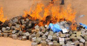 9 أطنان من المخدرات التي ضبطت بطنجة خلال سنة واحدة تؤكد أن تجارة الحشيش في أوجها