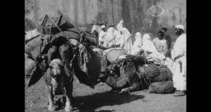 طنجة سنة 1908
