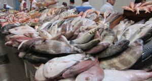 """مراسلة وزارية """"صارمة"""" موجهة إلى تجار السمك بميناء طنجة"""