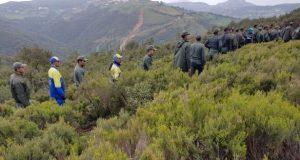 الحملة الأمنية التمشيطية بالغابات المحيطة بسبتة المحتلة تدخل أسبوعها الثاني
