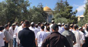 فعلوا ذلك عبر باب المغاربة: مئات الصهاينة يقتحمون المسجد الأقصى في ذكرى احتلال القدس