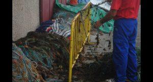 أعشاب البحر تغزو البوغاز