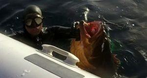 صيد الأعماق بالمضيق