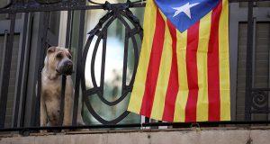 راخوي يعلن نزع الحكم الذاتي عن إقليم كتالونيا ويدعو لانتخابات بالإقليم