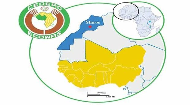 """تقرير تحليلي: المغرب يريد الانضمام إلى """"سيداو"""".. لكن هل يقبل بالعملة الموحدة وبفتح الحدود؟"""
