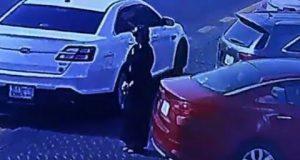 في السعودية.. المرأة تسوق السيارة لأول مرة.. وتسرقها أيضا! (فيديو)