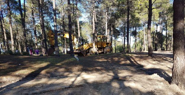 """في ظل التدمير الممنهج لغابة """"الرهراه"""" بطنجة: الشرطة القضائية تدخل على الخط"""