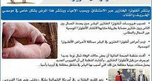 """بعد ازدياد المخاوف: وزارة الصحة تطمئن المغاربة حول """"أنفلونزا الخنازير"""""""