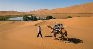 دراسة: العالم العربي سيتحول إلى جنة خضراء مستقبلا
