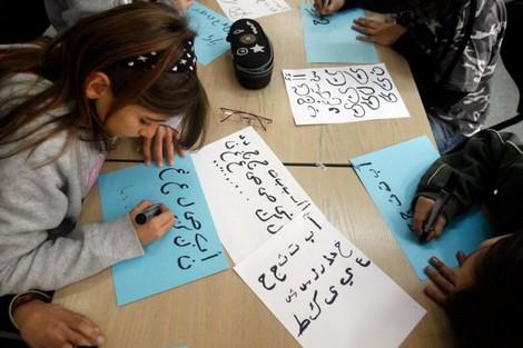 استمرار التضييق على اللغة العربية في المغرب