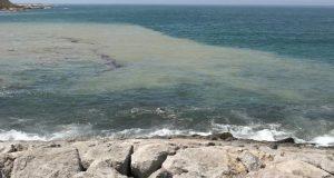 جريمة بيئية في شاطئ مرقالة بطنجة