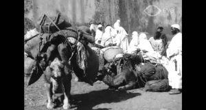 طنجة 1903