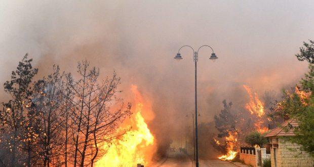 الحرائق ترعب لبنان