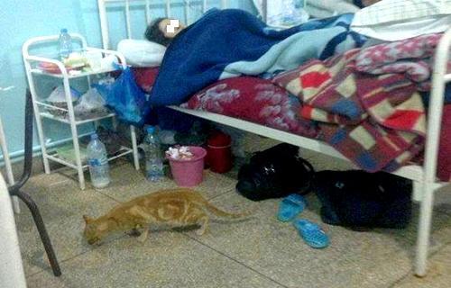 وضع لا يطاق بجناح الولادة بمستشفى محمد الخامس بطنجة