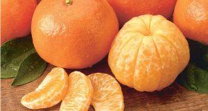 لا تتخلوا عن هذه الفاكهة: هذه فوائد المندارين